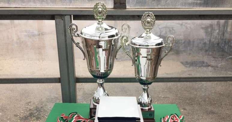 Ph Afragolese, Coppa Campania Juniores