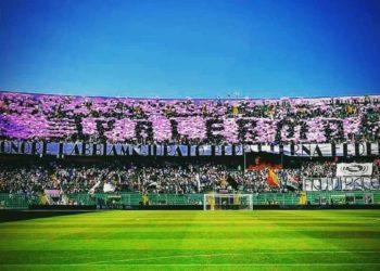 Ph Palermo Calcio, tifosi