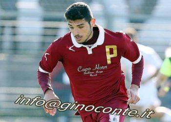 Ph Gino Conte, Vittorio Palumbo