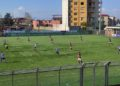 Real Agro Aversa-Fasano ph Real Agro Aversa
